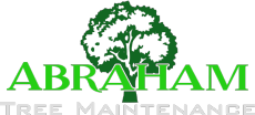 Abraham Tree Maintenance